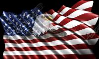 Waving American Flag Eagle Head Small 2 Cloth