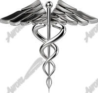 EMS Badge 3