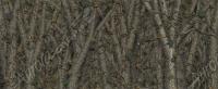 Bushwolf Forest Camo
