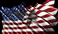 Waving American Flag Flying Eagle 2 Cloth