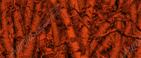 Bushwolf Forrest Inferno Camo