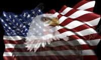 Waving American Flag Eagle Head