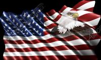 Waving American Flag Eagle Head Small 4 Cloth