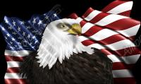Waving American Flag Eagle Head 2 Cloth