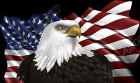 Waving American Flag Eagle Head 2