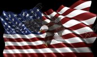 Waving American Flag Flying Eagle 2