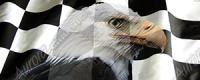 Racing Checked Flag Eagle