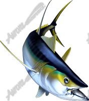 Yellowfin Tuna 2