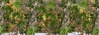 Watery Oak Camo