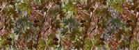 Green Oak Camo
