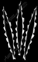 Metal Rips