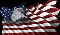 Waving American Flag Eagle Head Small 3