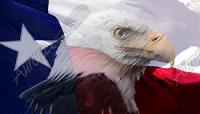 Texas Flag Eagle