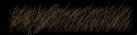 Bushwolf Grass Accent