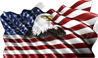 Waving American Flag Eagle Head Small Cloth