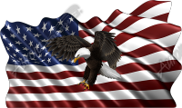 Waving American Flag Flying Eagle