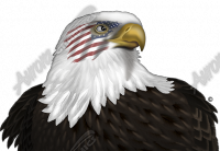 Eagle Headshot Flag