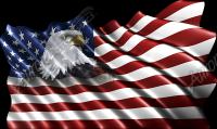 Waving American Flag Eagle Head Small 3 Cloth