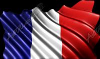 Waving French Flag Cloth