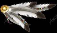 Ornamantal Feathers