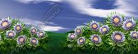 Landrys Flowers