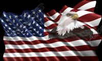 Waving American Flag Eagle Head Small 4