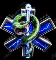 EMS Serpent