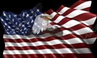 Waving American Flag Eagle Head Small 2
