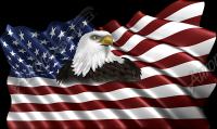 Waving American Flag Eagle Head Small