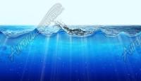 Ocean Water Splash