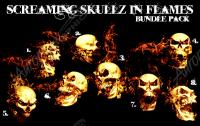 Screaming Skullz in Flames Bundle