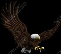 Attack Eagle 2