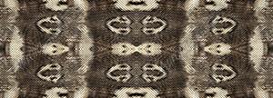 Snake Skin 4