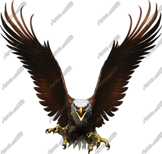 Eagle Flight Straight