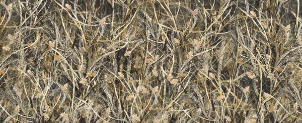 Bushwolf Obliteration Tallgrass Camo