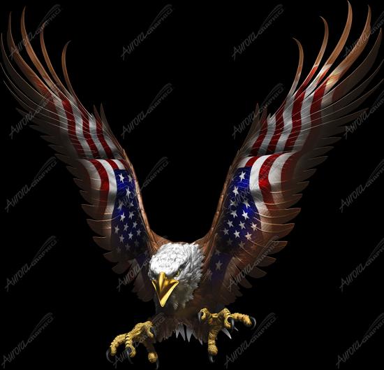 American Eagle Flight Angled