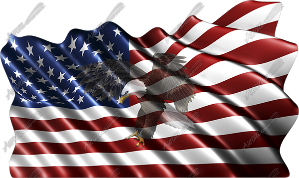 Waving American Flag Flying Eagle 2 Cloth