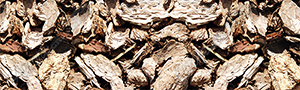 Large Wood Chips