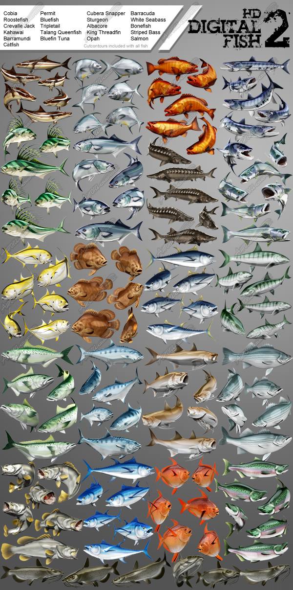 HD Digital Fish Pack 2