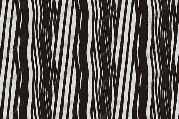 Zebra Hide 1