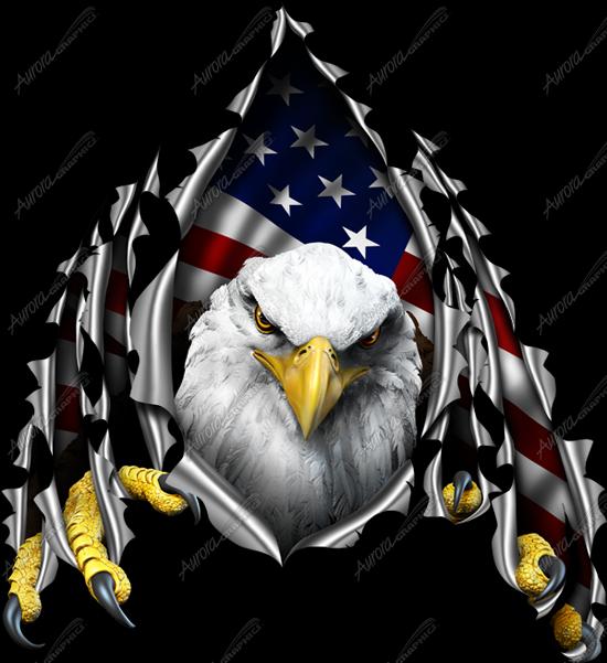 American Eagle Rip