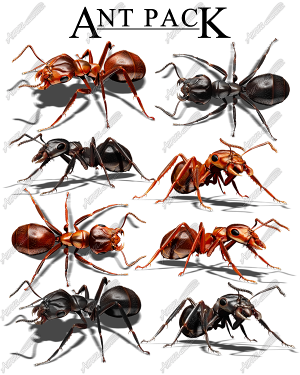 Ant Pack
