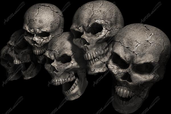 Cracked Skullz