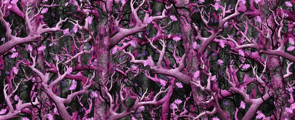 Bushwolf Obliteration Pink Camo