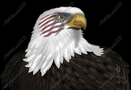 Eagle Headshot Flag