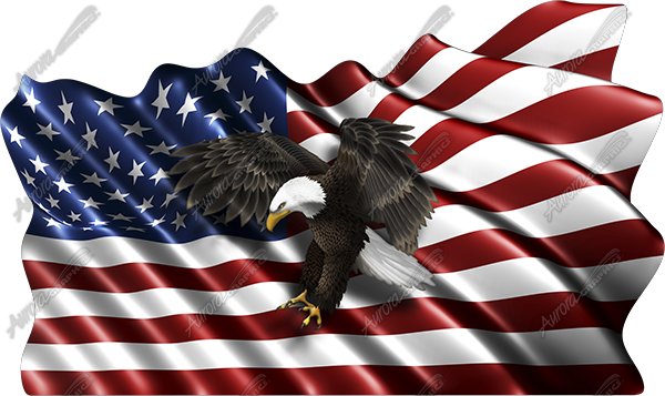 Waving American Flag Flying Eagle Cloth