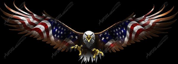 American Eagle Flight Wide