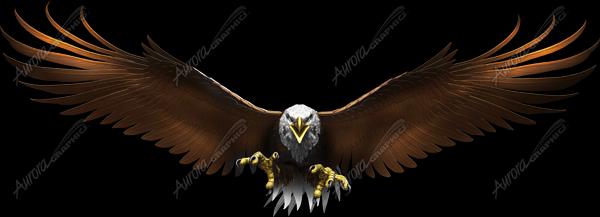 Eagle Flight Wide